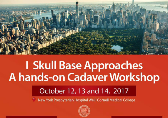 I Skull Base Approaches: A hands-on Cadaver Workshop